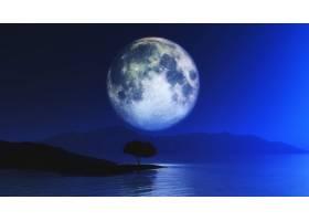 月色天空衬托下树木的3D景观_8879798