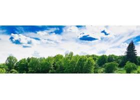 夏日的田野映衬着蓝天美丽的风景_6963539