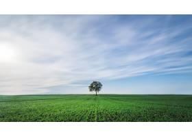 多云天空下一片绿地的美景_8857957