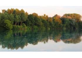 在晴朗的天空下湖面上倒映着许多树木的美_8990264