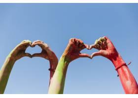 在蓝天的衬托下女人的手显示出心形_4454323
