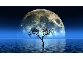 天空中有月亮的See中枯树的3D渲染_10167245