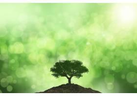 太阳照射在树上的3D背景在波克背景下_7507725