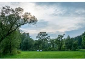 在宁静的蓝天下一片绿草区被树木包围的美_13153378