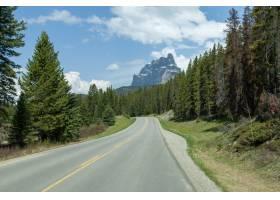 加拿大阿尔伯塔省城堡山森林中央的空路_9990943