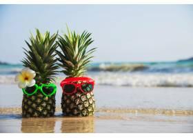 可爱的情侣新鲜菠萝把阳光可爱的眼镜放在干_5073599