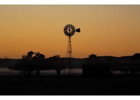 傍晚令人惊叹的日落中风车和树木的轮廓_10809581