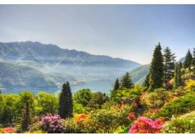 以令人惊叹的山脉为背景鸟瞰美丽多彩的风_11206480