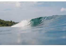 与树木一起拍打着汹涌的海浪的美丽镜头_11540710