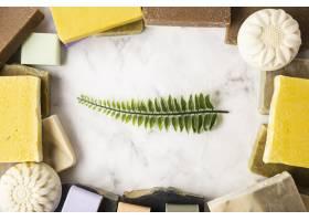 中间有叶子的肥皂框_5724296