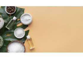 带复印空间的天然化妆品和洁面盘_8733265