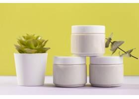 带有盆栽植物的奶油容器_8269756