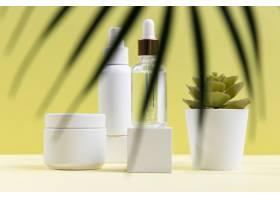 含有盆栽植物的化妆品组合物_8269790