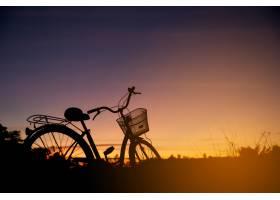 日落时分老式自行车的剪影_397615701