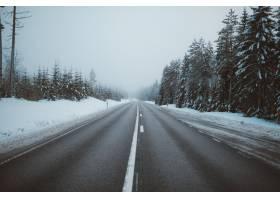 瑞典拍摄的积雪覆盖的田野上被树木包围的道_907672101