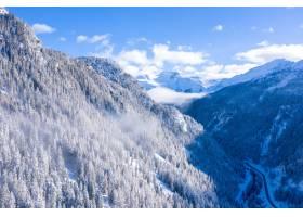 瑞士阿尔卑斯山冬季树木繁茂的森林美景_1204029401