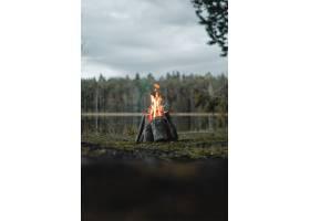 早晨多云天空下被绿色植物包围的营火的垂直_1294756001
