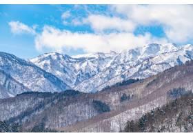 白雪覆盖的山上光秃秃的树木的美丽全景_1217703101