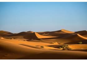有灌木丛和晴朗天空的沙丘的美丽镜头_784839301
