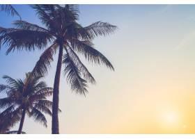 椰子树威尼斯效果桑_108839101