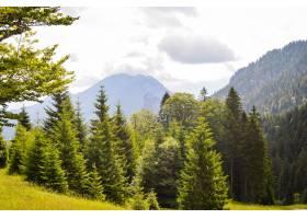 德国高山的美丽景色_1300694101