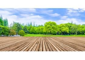 反射木材阳光草坪天然产物乡村_124416201