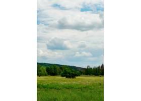 在多云的天空下垂直拍摄一个美丽的绿色山谷_1306078201