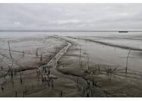在多云的灰色天空下拍摄的宽阔的滩涂_1011944401
