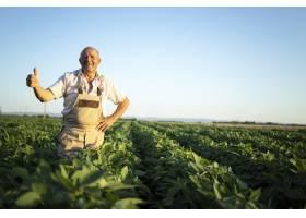 在大豆地里辛勤耕耘的资深农民农艺师竖起大_1145086001