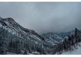 在灰暗的天空下高角拍摄了雪山中的云杉林_985163501
