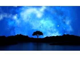 在繁星点点的夜空映衬下的树影_147590001