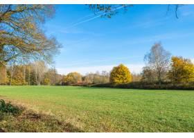 在晴朗的蓝天下拍摄美丽的绿色风景_1315361601
