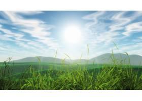在蓝色晴朗天空的衬托下3D草地景观_449821101