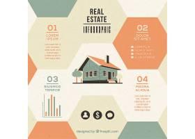 住宅平面设计中的六边形房地产信息图_866144
