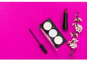 红色唇膏眼影粉色背景上的睫毛膏和花枝_4441158