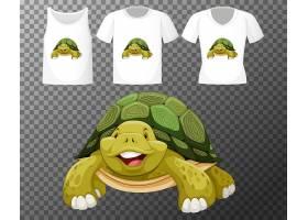透明背景多款衬衫的乌龟卡通形象_12321434