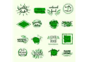 以绿色生物生态和有机元素设置的健康食品标_4005935