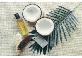 椰子和棕榈叶_1454711