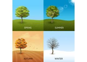 以树木为天空背景的四季概念集_2874812