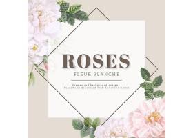 玫瑰花毛白卡设计_4168425