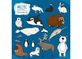 一套手绘的北极动物以冷蓝色为背景配上_10700557