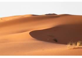 阳光明媚的一天沙漠地区沙丘的美景_13235503