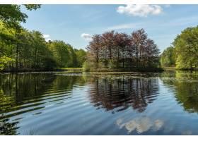 白天蓝天下绿树环绕的池塘_10074821