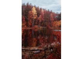 秋色树木环抱的湖水美景_13006329
