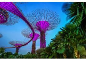 新加坡夜景中的新加坡城市风光_11768956