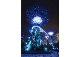 新加坡夜景中的海湾花园_4693955