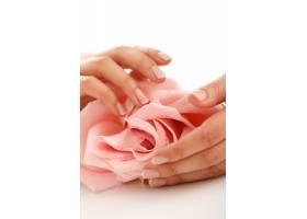 手戴粉红色玫瑰的女性手女性气质概念_10204822
