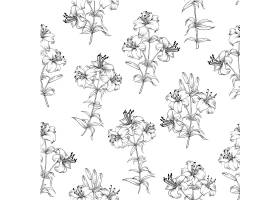 花卉无缝图案白色背景上盛开的百合_10123012