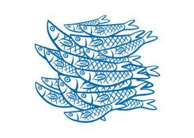 白色背景上的鱼_1116729