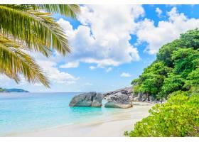 美丽的热带海滩_3501158